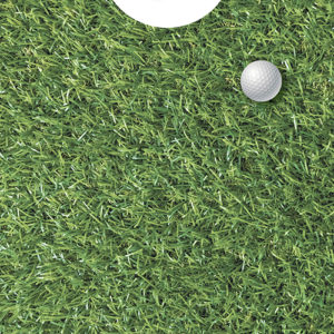 hole in one golf spel