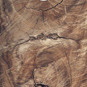 Oak tree cornhole spel